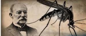 Cartel alegórico a  Carlos Juan Finlay y a su descubrimiento sobre el mosquito  Aedes Aegypti