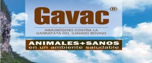 Acoge Camagüey VII Taller Nacional de Productos Estratégicos Agropecuarios