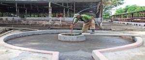 Agricultura en Holguín prioriza el uso del biogás