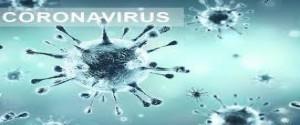 Coronavirus, foto tomada de Internet