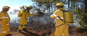 Las fuerzas del Cuerpo de Guardabosques están entrenadas y listas para enfrentar los incendios forestales. (Foto: Calixto N. Llanes)