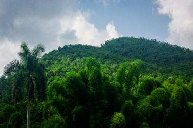 Comunidad Las Terrazas, actualmente provincia Artemisa. La zona es reserva de la biosfera y está ubicada en la Sierra del Rosario.