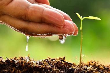 Inician proyectos de cooperación Cuba-Italia sobre cambio climático