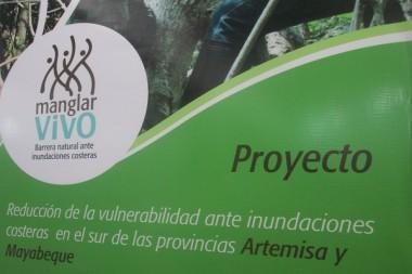 Cartel alegórico al proyecto Manglar Vivo