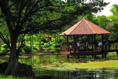 Canopy del Jardín Botánico Nacional