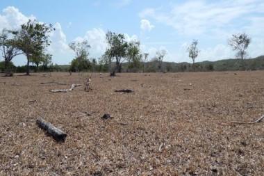 Marzo de 2020: El más seco en Cuba desde 1961