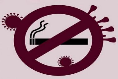 Declaración de la OMS: consumo de tabaco y COVID-19