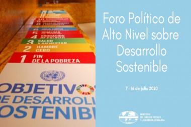 Cartel alegórico al Foro Político de Alto Nivel sobre Desarrollo Sostenible