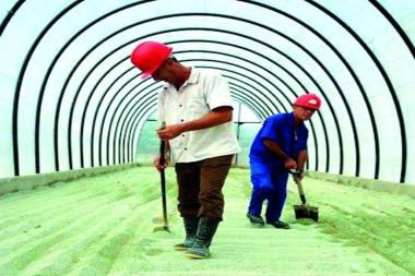 Planta inaugurada el pasado 11 de noviembre para producir los fertilizantes y sustratos Nerea, destinados a la agricultura, creados en el IMRE Foto: Cortesía del IMRE Foto: cortesía