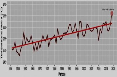Temperatura media anual en los últimos 58 años