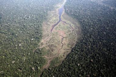 Vista aérea del Bosque Nacional Bom Futuro en el estado brasileño de Rondônia, en 2015. Foto: Nacho Doce / Reuters.