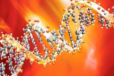 Ilustración del ADN