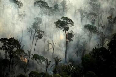 Humo de un incendio en una zona de la selva amazónica cerca de Porto Velho, estado de Rondonia, Brasil. Foto: Bruno Kelly / Reuters.