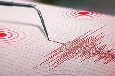 Registro sismológico. Foto: Tomada de Twitter