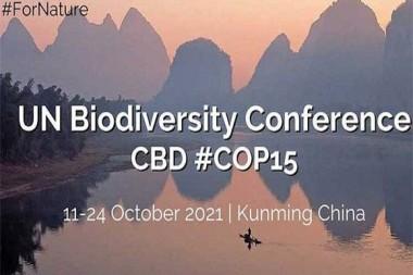 Cartel alegórico a la Cumbre Mundial sobre Biodiversidad